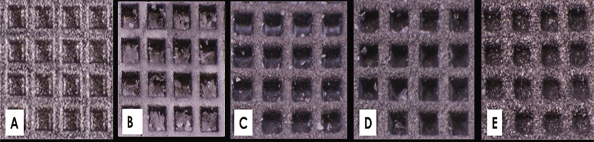 Figure 3 (A) Macro-photography images (focus stacking) of a new bracket, (B) without sandblasting bracket, and sandblasted brackets using different particle size of (C) 25 µm, (D) 50 µm and (E) 110 µm.